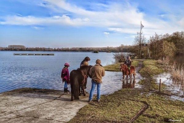 L'étang D'Amaury