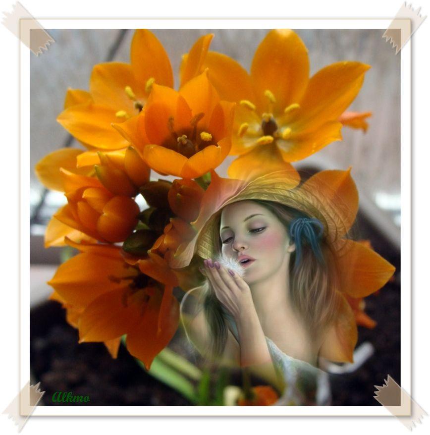 Une plante d 39 int rieur avec fleurs - Interieur d une fleur ...